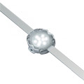 Traxon LED 32PXL Dot XL-9 CW/WW